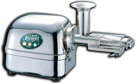 Angel Juicer 7500 Entsafter